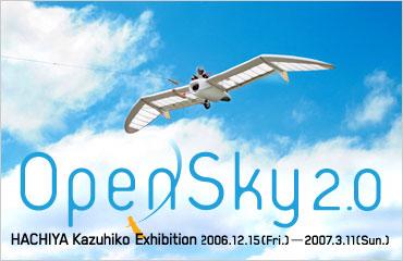 ICC Online   OpenSky 2.0